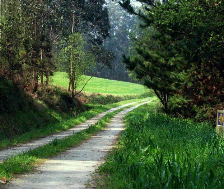 Portuguese Way - Camino de Santiago