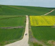French Camino